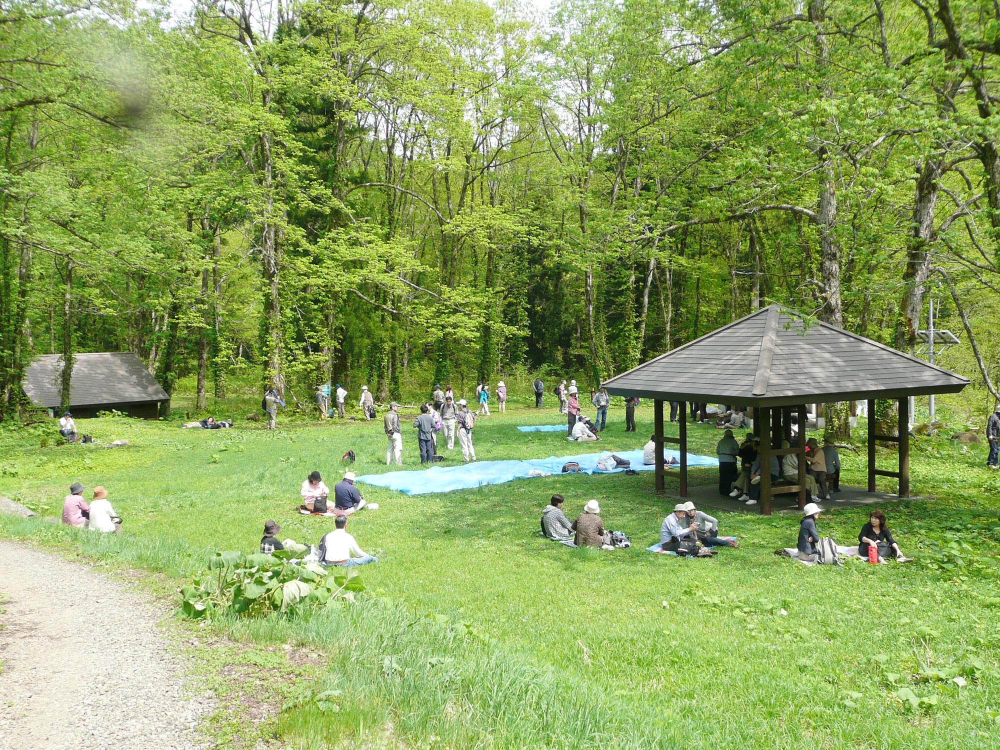 14_camp