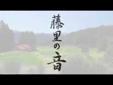 藤里の音/桂田 和仁